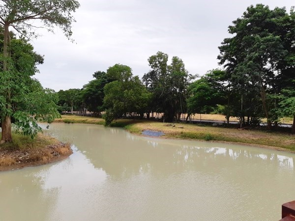 Land in Jomtien Area for Sale - Land - Bang Lamung - Jomtien